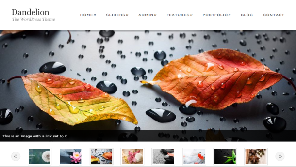 Screen Shot 2014 02 26 at 11.45.00 109 Beautiful Premium Responsive Wordpress Themes