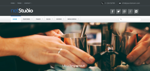 Screen Shot 2014 02 26 at 12.00.24 109 Beautiful Premium Responsive Wordpress Themes