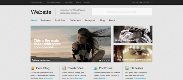 Website wordpress theme