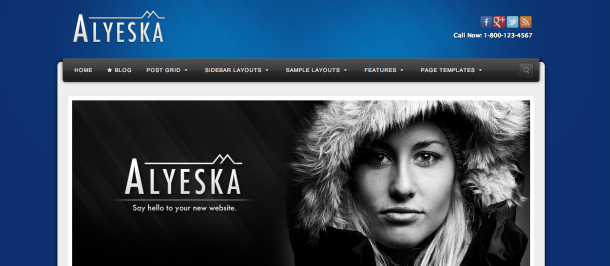 Aleyska wordpress theme