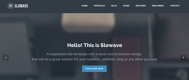 Slowave wordpress theme