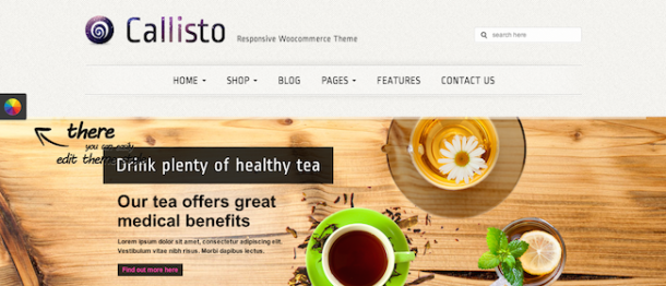 Callisto Premium WordPress Theme