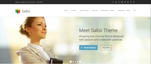 Salbii premium wordpress theme