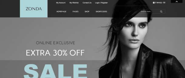 Zonda premium wordpress theme