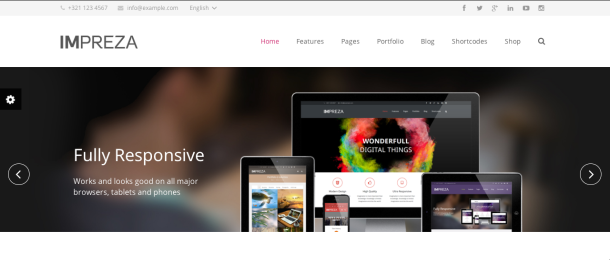 Screen Shot 2014 02 27 at 09.26.15 109 Beautiful Premium Responsive Wordpress Themes