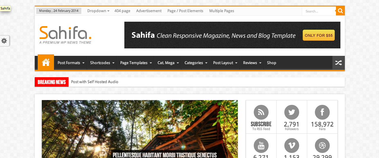 Screen Shot 2014 02 27 at 09.28.31 109 Beautiful Premium Responsive Wordpress Themes