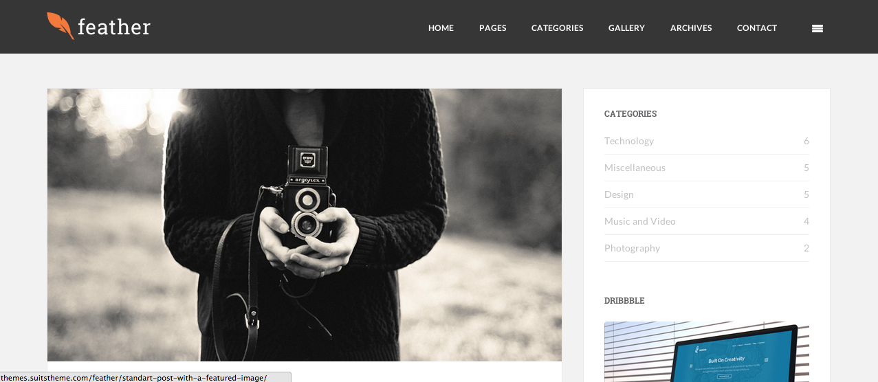 Feather WordPress paid theme