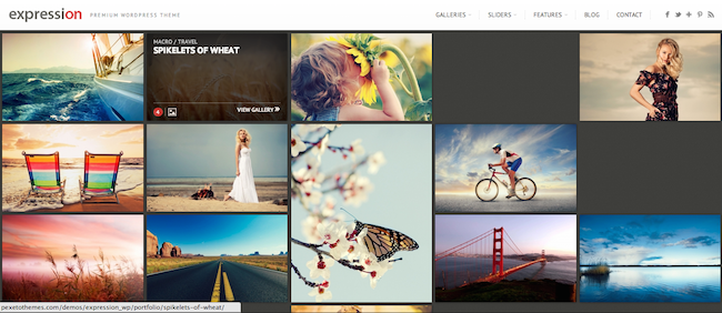 Expression WordPress paid theme