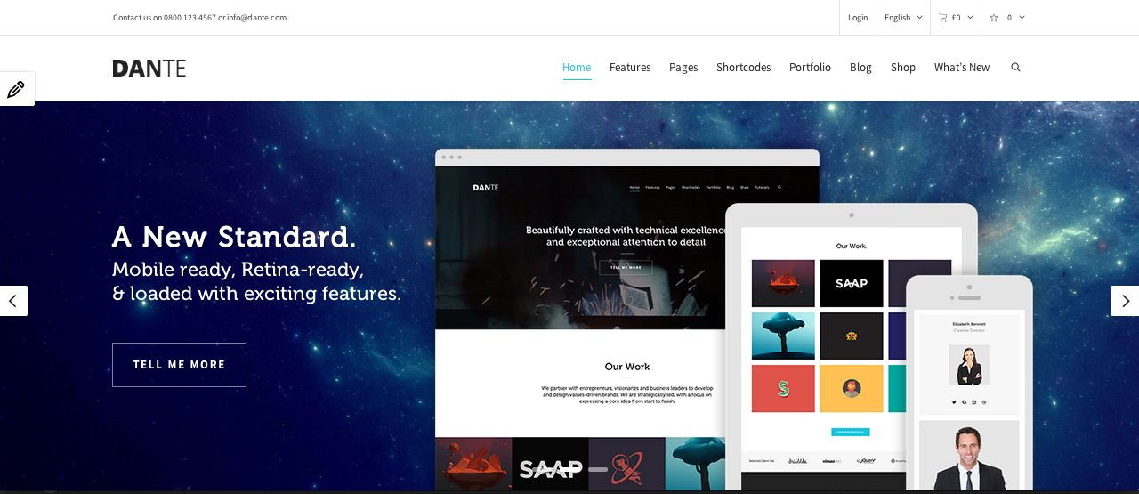 Screen Shot 2014 02 27 at 13.49.31 109 Beautiful Premium Responsive Wordpress Themes