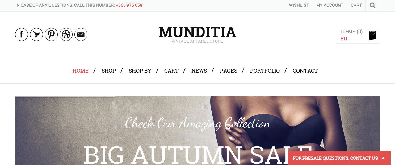 Munditia WP theme