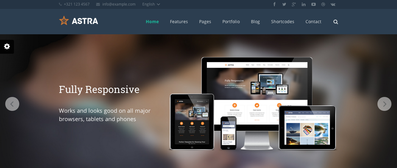 Screen Shot 2014 02 27 at 13.49.56 109 Beautiful Premium Responsive Wordpress Themes