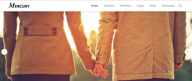 Screen Shot 2014 02 27 at 14.04.26 109 Beautiful Premium Responsive Wordpress Themes