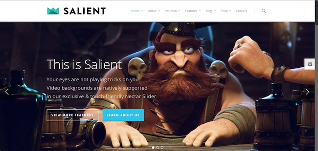 salient wordpress theme 109 Beautiful Premium Responsive Wordpress Themes