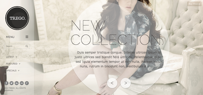 Trego WordPress theme