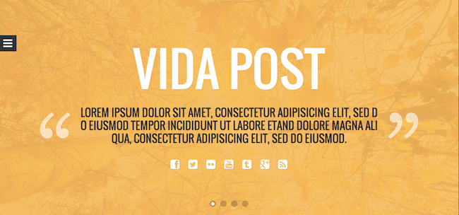 vida post theme 109 Beautiful Premium Responsive Wordpress Themes